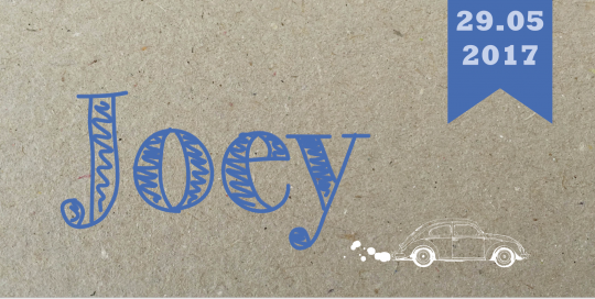 Lastig papier print Joey